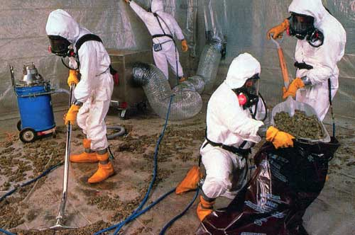 Asbestos Disposal Melbourne
