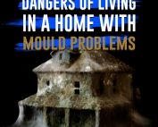 Dangers of Living in a House with Mould Problems
