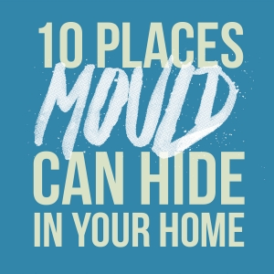 Places Mould Can Hide In Your Home