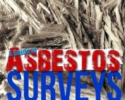 20161027-asbestos-survey